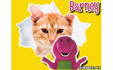 3529-Moldura-do-Barney