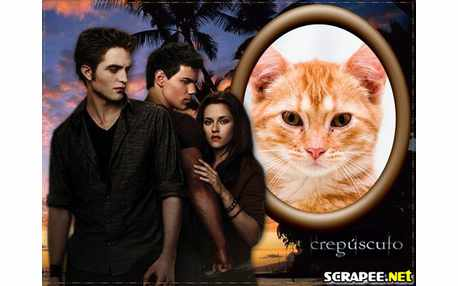 3546--Crepusculo