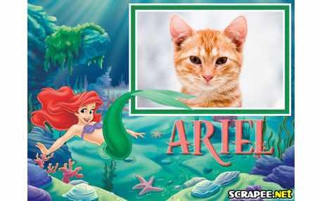 3553-Ariel