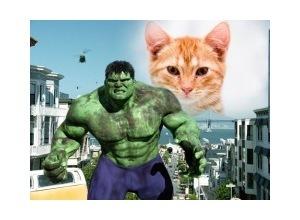 MolduraThe Hulk