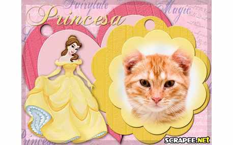 3620-Princesa