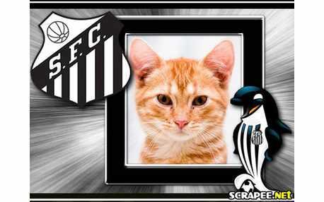 3665-Santos-futebol-clube