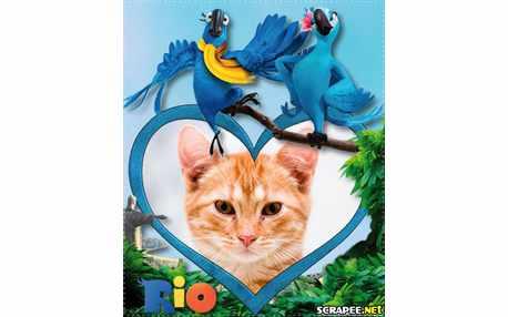 3740-Filme-Rio-3d