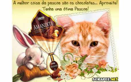 Moldura - Chocolate Lacta