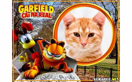 3773-Garfield-Cai-na-real