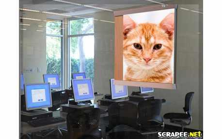 Moldura - Escola De Informatica