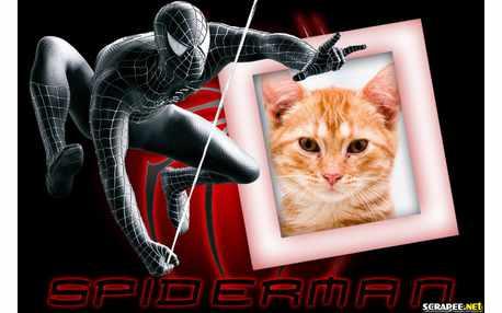 Moldura - Spider Man