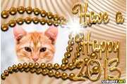 5895-Happy-2013