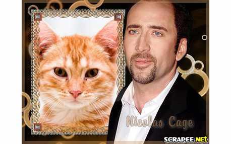 Moldura - Nicolas Cage