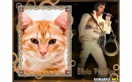 3903-Elvis-Presley