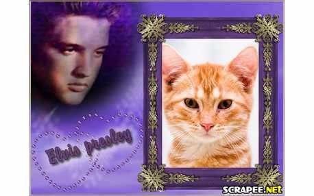 3904-Elvis-Presley