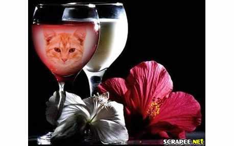 Moldura - Vinho Rose