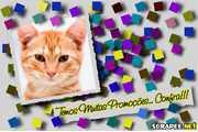 3974-Panfleto-para-promocoes
