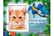 4065-Convite-do-filme-rio