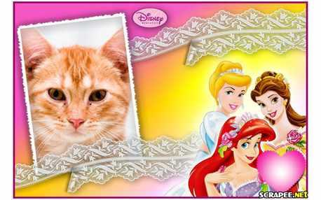 5095-Princesas-Disney