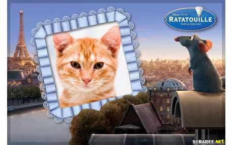 5097-Ratatouille
