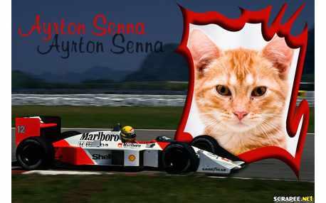 Moldura - Carro De Ayrton Senna