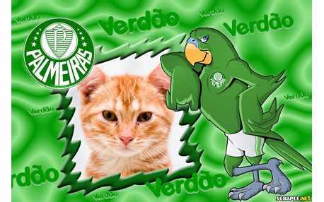 Moldura - Palmeiras Verdao