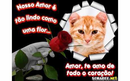 4135-Amor-lindo-como-uma-flor