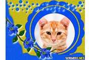 4150-Galho-de-flor-azul