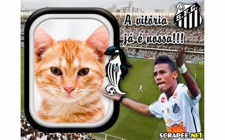 4195-Santos-campeao-com-Neymar