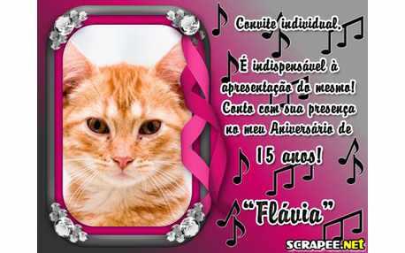 Moldura - Flavia 15 Anos