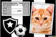 5160-Convite-do-Botafogo