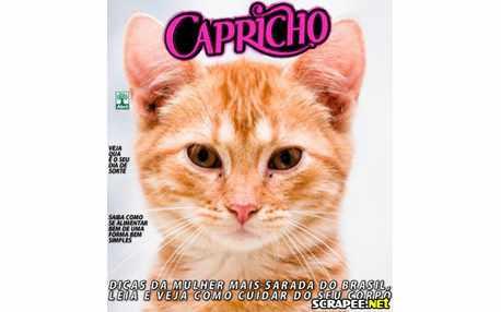 Moldura - Montagem Da Revista Capricho