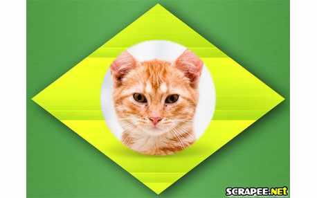 Moldura - Montagem De Foto Na Bandeira Do Brasil