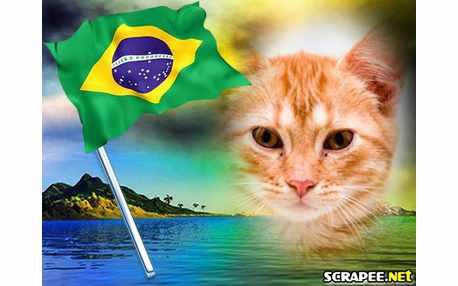 4345-Bandeira-do-Brasil