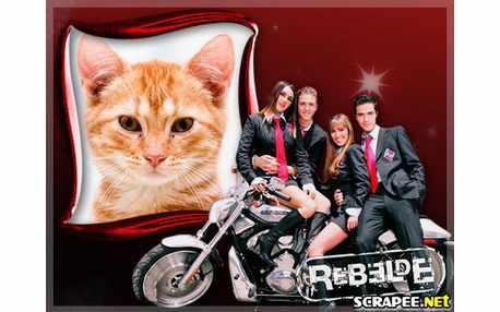 4366-rebelde