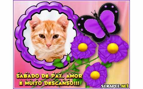 Moldura - Flores Roxas   Sabado