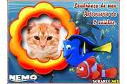 4466-lembranca-de-2-anos-do-Nemo