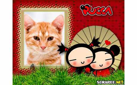 4588-Pucca