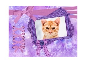 Purple-Frame