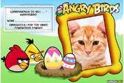 5329-Lembrancinha-Angry-Birds