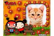 4699-Pucca