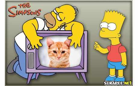 Moldura - Homer E Bart Simpsons