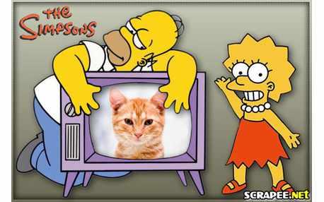Moldura - Homer E Lisa Simpsons