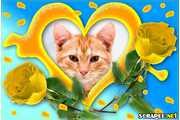 4726-Coracao-com-rosas-amarelas
