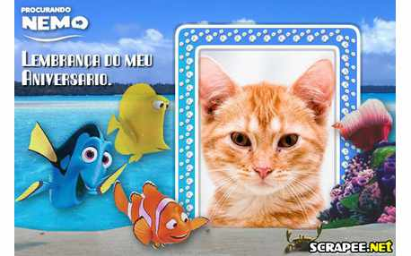 Moldura - Lembrancinha Procurando Nemo
