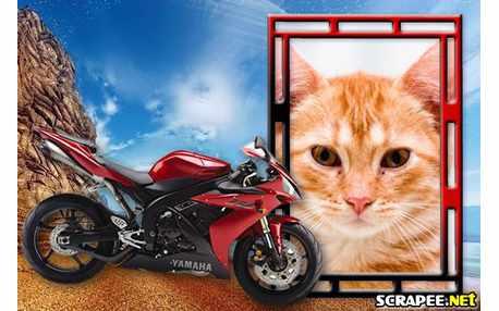 Moldura - Moto Yamaha Vermelha