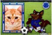 4763-Mascote-Cruzeiro-Esporte-Clube