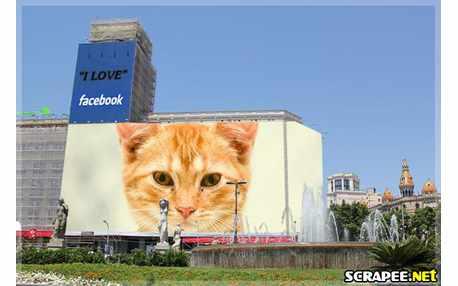 Moldura - Eu Amo Facebook