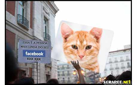 Moldura - Moldura Para Facebook