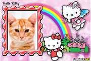 4772-Hello-Kitty