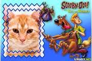 4805-Scooby-doo-e-o-Rei-dos-Duendes---Filme-Scooby-doo
