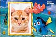 4808-Procurando-Nemo