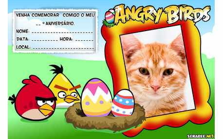 5330-Convite-Angry-Birds