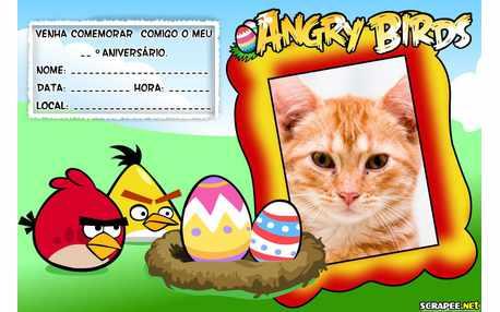 Moldura5330 Convite Angry Birds
